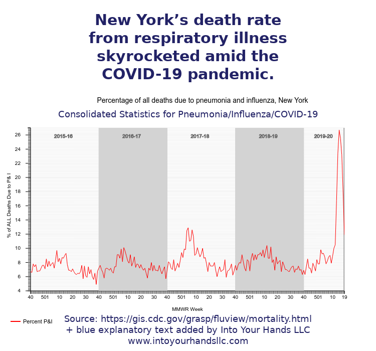 pic19 death rate ny